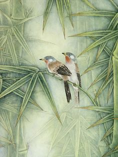 birds on bamboo
