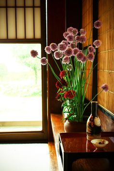 A late spring morning in a Japanese country house Traditional Japanese House, Japanese Modern, Traditional Interior, Japanese Design, Japanese Culture, Japanese Style, Japanese Home Decor, Asian Home Decor, Japanese Interior