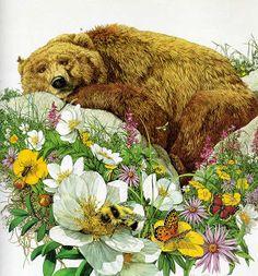Bugged Bear by Bev Doolittle