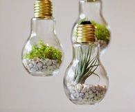 DIY Upcycle lightbulbs