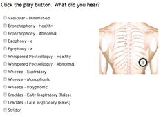 quiz site for auscultation !!!!!! what do you hear?