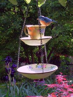 A chipped teacup makes a really cute bird feeder.