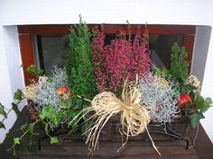podzimni dekorace - Hledat Googlem Balcony Garden, Pretty Flowers, Container Gardening, Tulips, Fall Decor, Diy And Crafts, Projects To Try, Home And Garden, Wreaths