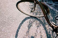 bike, indie