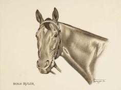 BOLD RULER | The Sporting Art Auction
