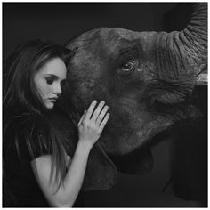 Vanessa Paradis With Elephant, 1991 Photo Michel Comte