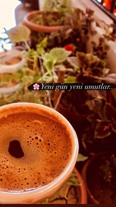 Coffee Photography, Food Photography, Tea Cafe, Gin, Food Snapchat, Fake Photo, Coffee Love, Bookstagram, Food And Drink