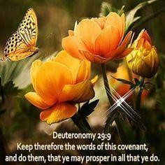 Deuteronomy 29:9 KJV