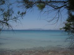 View of the sea from the port of Vagia with its typical pine trees by HellasHoliday, via Flickr