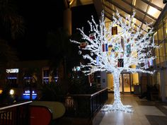 Small but beautiful Christmas lighting inspiration for cities, shopping centers, corporate businesses and any space that needs a little sparkle! Christmas Pictures, Christmas Trees, Beautiful Christmas, Light Decorations, Cities, Sparkle, Lighting, Holiday Decor, Inspiration