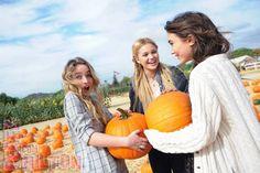 Sabrina, Olivia and Rowan Olivia Holt, Fall Pictures, Fall Photos, Senior Pictures, Sabrina Carpenter, Pumpkin Patch Pictures, Pumpkin Pics, Disney Channel Stars, Disney Stars