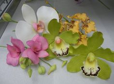 Orchids http://dreamers.marthastewart.com/photo/southern-magnolia-in-sugar/next?context=user