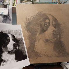 Bernese Mountain dog work in progress Bernese Mountain, Mountain Dogs, My Arts, Polaroid Film, Artwork, Work Of Art, St Bernese Mountain Dog, Bernese Mountain Dogs