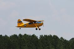 Stinson 10A, Florida Wing