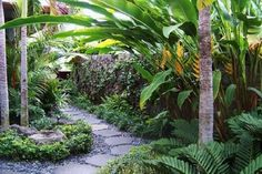 Awesome Tropical Garden Landscaping Ideas 29 You are in the right place about tropical garden ideas Small Tropical Gardens, Tropical Garden Design, Tropical Backyard, Tropical Landscaping, Landscaping With Rocks, Small Gardens, Tropical Plants, Outdoor Gardens, Landscaping Ideas