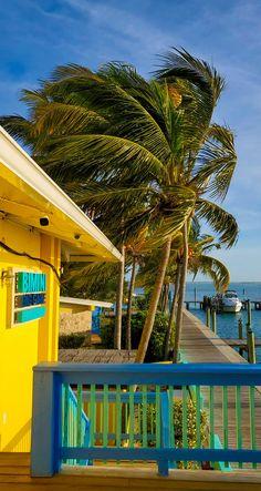 "The ""RealBimini"" #Bahamas #Bimini #Boating #Fishing Alice Town, Romantic Honeymoon Destinations, Big Sea, Bahamas Vacation, Turks And Caicos, Famous Places, Big Game, Boating, Caribbean"