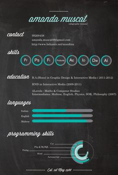 infographic resume by Amanda Muscat, via Behance