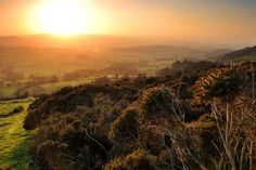 At last some British Sun!! Triscombe Sunset by Cloud Tree Photography, via 500px