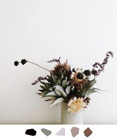 Hue Inspire Me | Fernaly