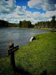 ~This pic totally reminds me of David and me, just sittin by the lake with some cold ones, and not a care in the world :) ♥  Yellowstone
