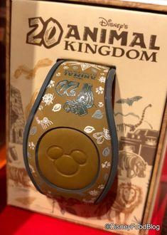Disney World's Animal Kingdom Lodge Has Gone Cashless…But What Does That Mean? Disney World Tours, Disney World Parks, Disney World Resorts, Caribbean Beach Resort, Disney Magic Bands, Disney Planning, Animals Of The World, Disney Food, Disney Outfits