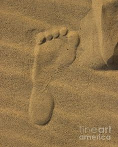 Title Foot Print In The Sand Artist Tom Gari Gallery-Three-Photography Medium Photograph - Photography Coast Style, Sea And Ocean, Beach Art, Beach Photography, Footprint, Fine Art America, Fine Art Prints, Toms, Medium