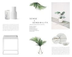 """""""The Minimalist"""" by nmkratz ❤ liked on Polyvore featuring interior, interiors, interior design, home, home decor, interior decorating, NDI, Crate and Barrel and kitchen"""