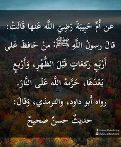 Islam Hadith, Islamic Quotes, Words Quotes, Beautiful Images, Reflection, Motivation, Wrought Iron, Arabesque, Word Sentences