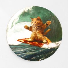 Need a Sad T Rex Sticker? This Happy Clap Sticker by Goodie Two Sleeves is sure to delight! Goodie Two Sleeves, Pizza Cat, Bansky, Cat Stickers, Fluffy Cat, Surfs Up, T Rex, Funny Cute, Funny Animals