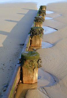Cromer Beach by Chris Harrison