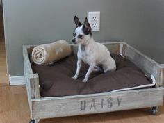 Make a pet bed with a pallet Home Frosting: Daisy's Crate Bed Cheap Dog Beds, Cheap Pets, Cool Dog Beds, Crate Bed, Dog Crate, Chihuahua, Pallet Dog Beds, Diy Pallet, Pallet Wood