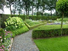 moosgarten anlegen geeignete pflanzen garten pinterest moosgarten draht und bodendecker. Black Bedroom Furniture Sets. Home Design Ideas