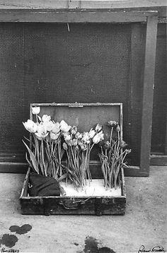 """Robert Frank. """"Paris, 1949."""" James Danziger Gallery."""
