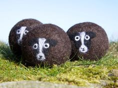 Wool dryer balls, pack of 3 Zwartbles sheep felted laundry balls, reusable, chemical free laundry, natural fabric softener