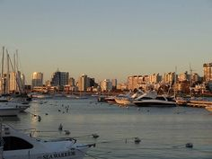 Puerto de Punta del Este - Maldonado