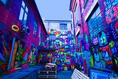 Фотография Backyard colors автор Linea Rosén на 500px