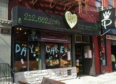 Harlem Pet Store