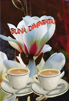 Joelle, Good Morning, Tea Cups, Pictures, Hapy Day, Pork, Buen Dia, Bonjour, Good Morning Wishes