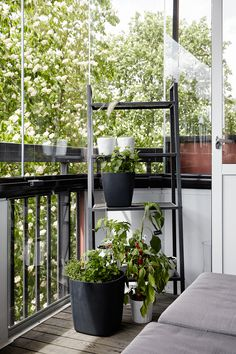 wow, nice #balcony and fancy planters