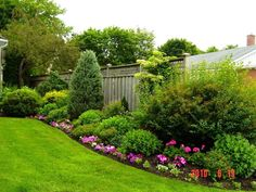 Nice balance of green shrubs (different textures and shapes) and mounds of colorful blooms low to the ground.
