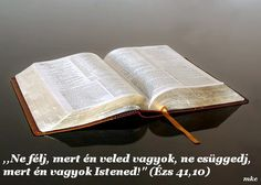 Biblical Health and Wellness: The Bible is Our Guide Biblical Quotes, Bible Quotes, Proverbs 12, Christian Quotes, Prayers, Blessings, Wellness, Health, Youtube