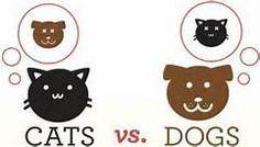 infografia mascotas - Bing images