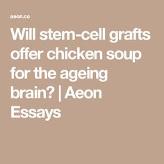stem cell research controversy essay buy an essay will stem cell grafts offer chicken soup for the ageing brain aeon essays