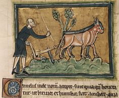 The Heavy Plough and the Agricultural Revolution in Medieval Europe - Medievalists.net