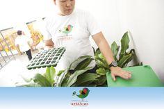 No Espaço da Jardinagem, contamos com produção de alfaces e um minhocário na qual ensinamos para a criança a conscientização ambiental.