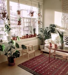 This renter used a curtain rod to hang macrame planters.