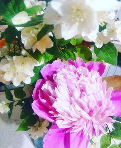 #flowers#green#esoteric#эзотерика#цветы#зелень#лето#энергия#энергетика#развитие#блог#summer#enegy#blog#инфо#природа#nature#follow#following#like Rose, Flowers, Plants, Instagram, Jewelry, Pink, Jewlery, Bijoux, Florals