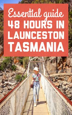 Launceston is a gateway to northern Tasmania's lavender farms, wineries, and national parks. Here's how to spend 48 hours in Launceston and the Tamar Valley! / A Globe Well Travelled