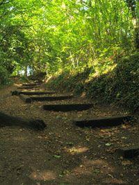 Parkland walk- 4.5 miles Crouch end-Highgate