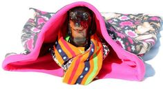 Monkey Troble Cozy Pet  Sleeping Bag for Pets  by ZippersCreations, $45.00